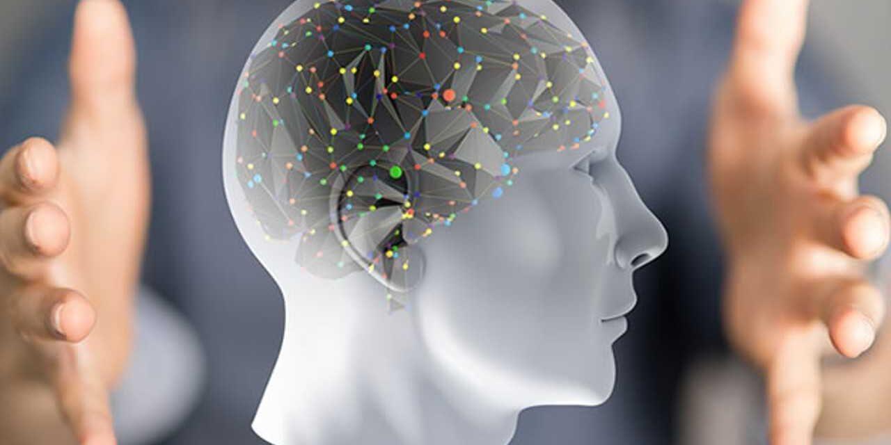 https://terapiando.com.br/wp-content/uploads/2017/07/neuropsicologia-1280x640.jpg